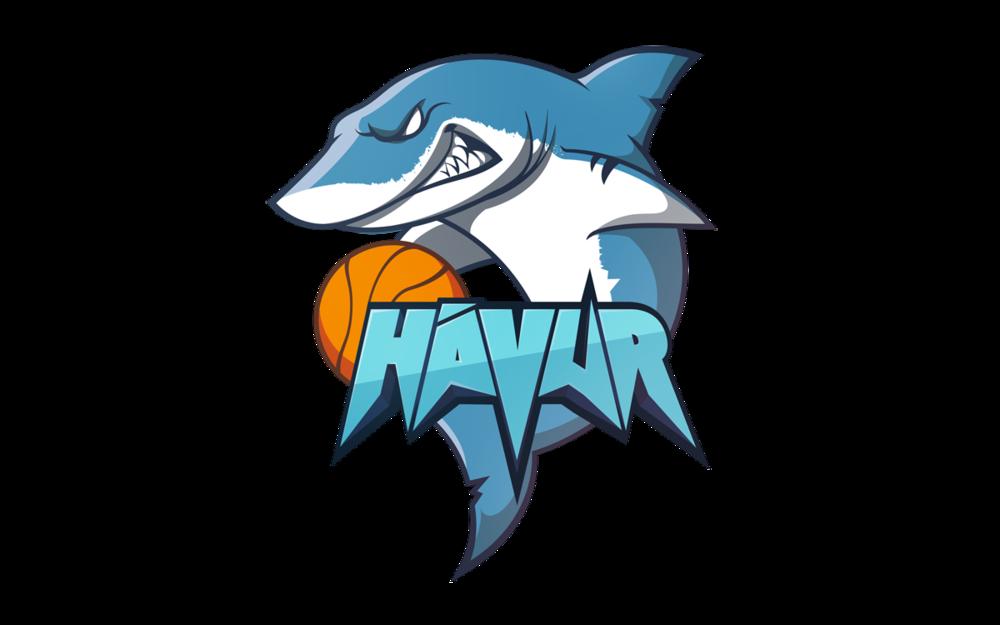 Havur_Logo.png