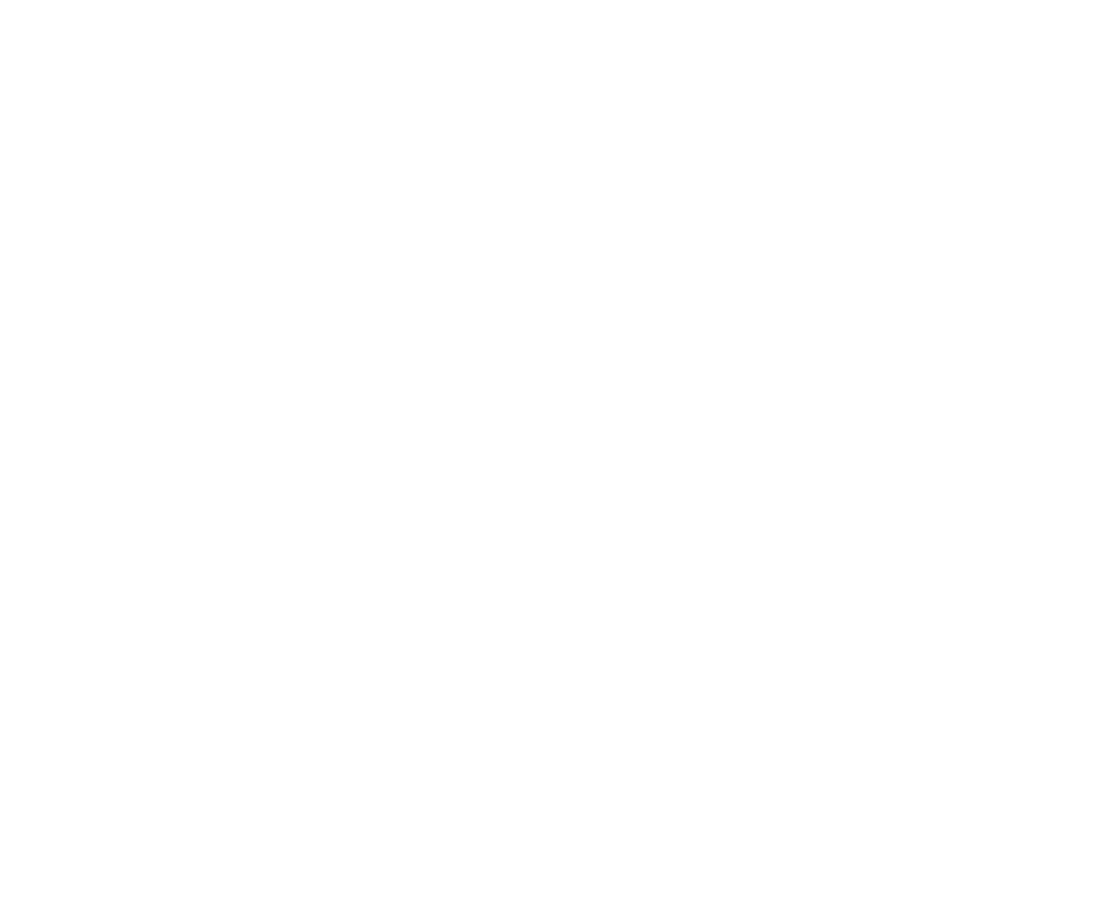 T.N King-logo-white.png