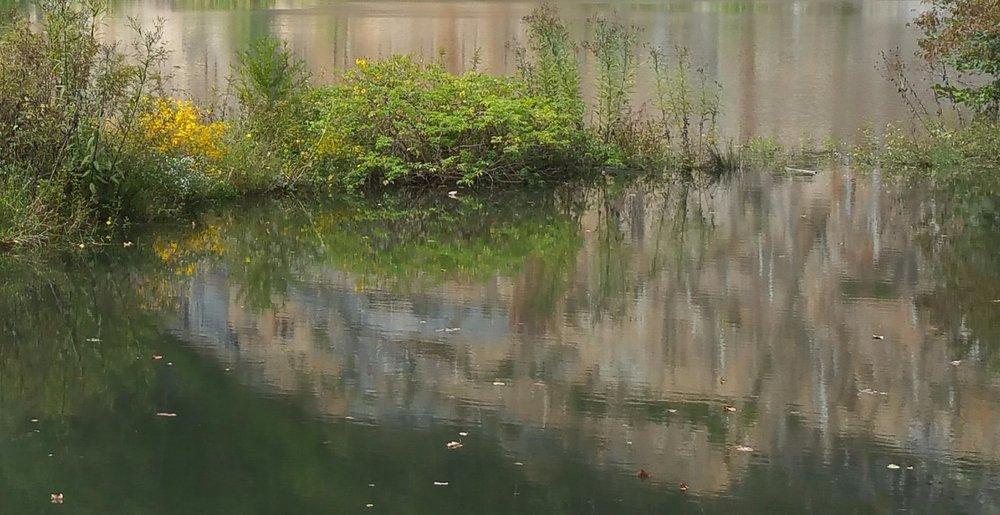 Reflection - Edited.jpg