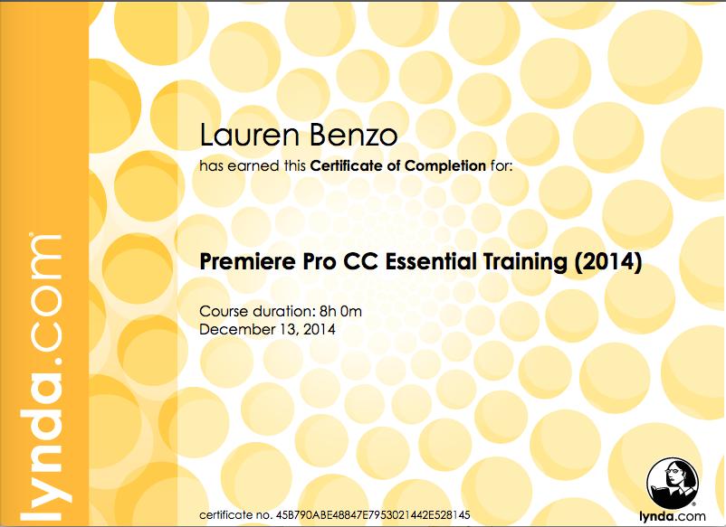 Premiere Pro CC Essential Training- December 2014.png