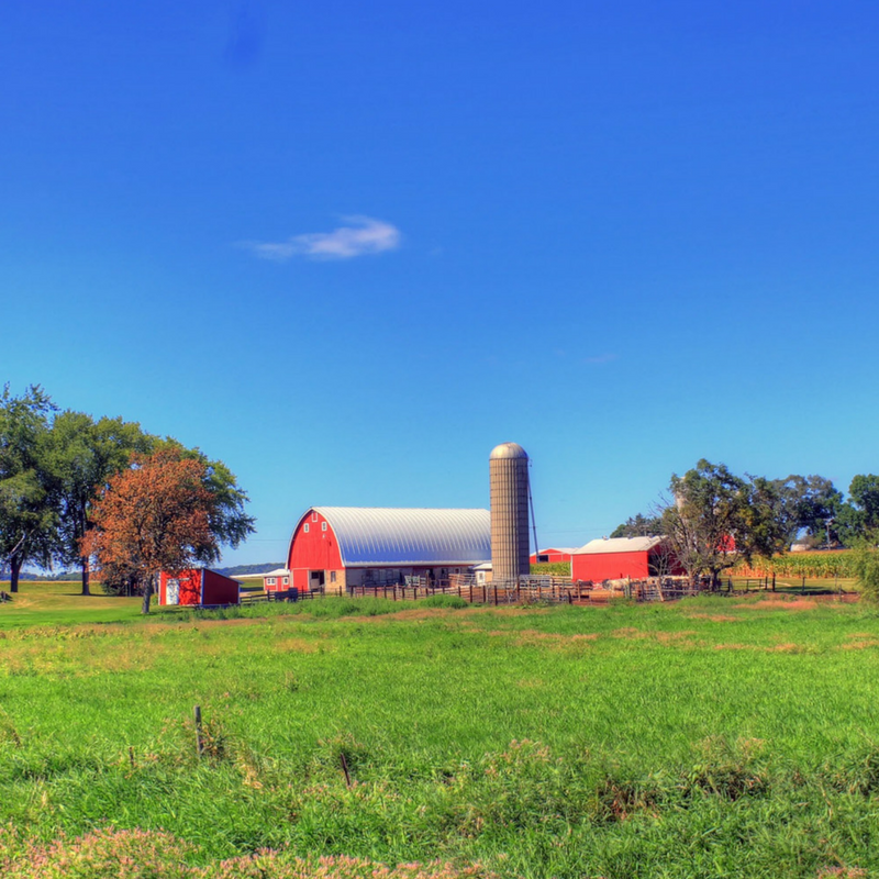 barns and a grain silo on a farm