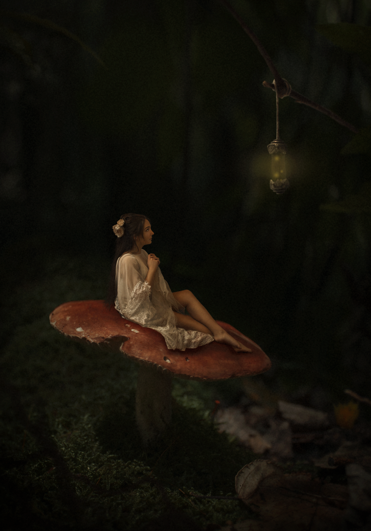 ©-Tora-Anne-Thompson-Fairy-on-a-Mushroom-1080px.png