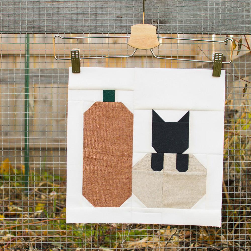kitty pumpkin.jpg