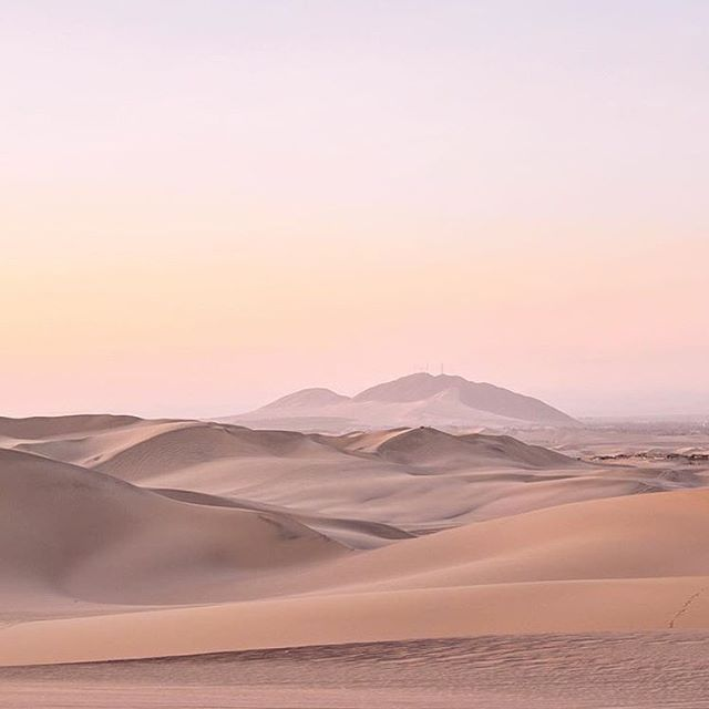 Pink skies . . 📷: @jessomewhere . . #pinksky #sunset #sanddunes #huacachina #peru #sunandsand #wildnature #desertoasis #colorinspiration  #inspiredbynature #natureconservation #conservation #wildlife #travel #slowfashion #ethicalfashion #wanderlust #wonder #curiosity #travelwithus #adventures #beautyinnature #saveendangeredspecies  #storytelling #science #design #protectwildplaces #protectbiodiversity #naturelove #PL_ecologies