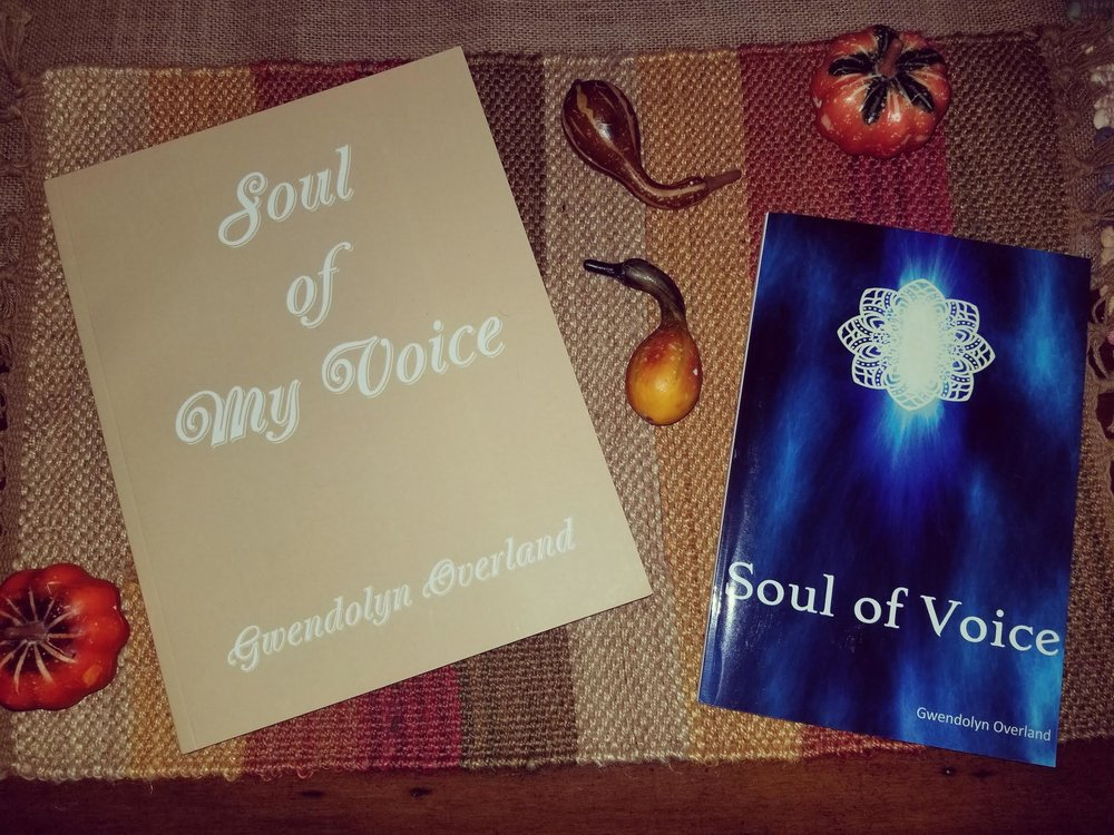 Many of you have purchased one or both of my books since their publication a year ago, and so I thank you from the depths of my heart.  This blog post is just a reminder that these books are still available for purchase and may make a special gift for yourself or someone you may have in mind. Here's hoping you have a safe and enormously joyous holiday filled with all the hopes, dreams and plans for a meaningful New Year!!