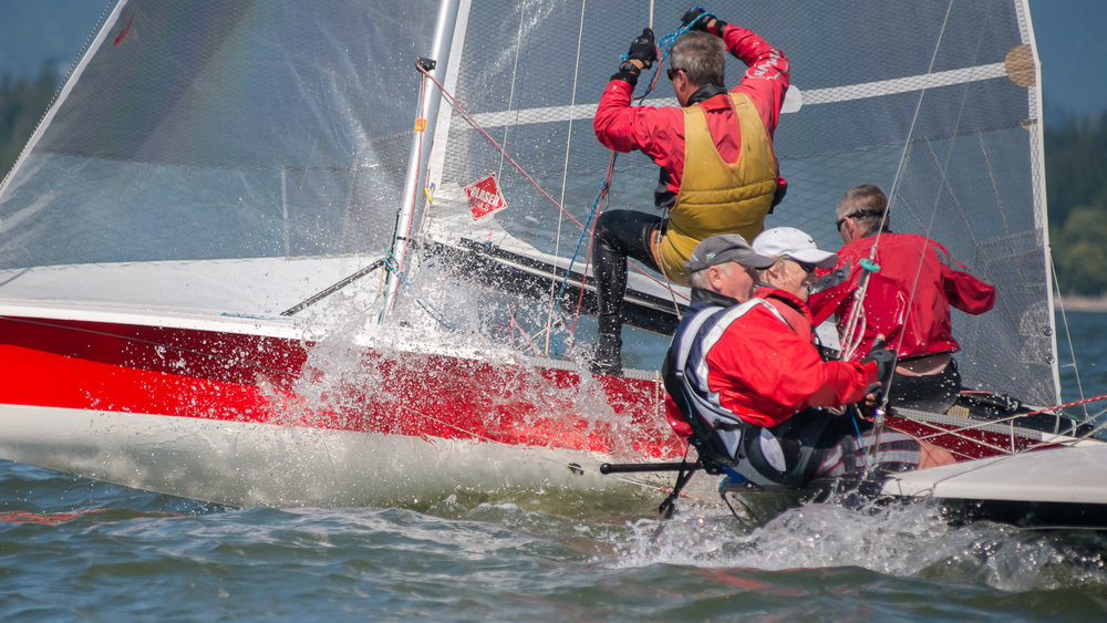 505 dinghy action