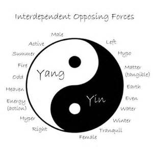 what-does-ying-and-yang-mean_3.jpg