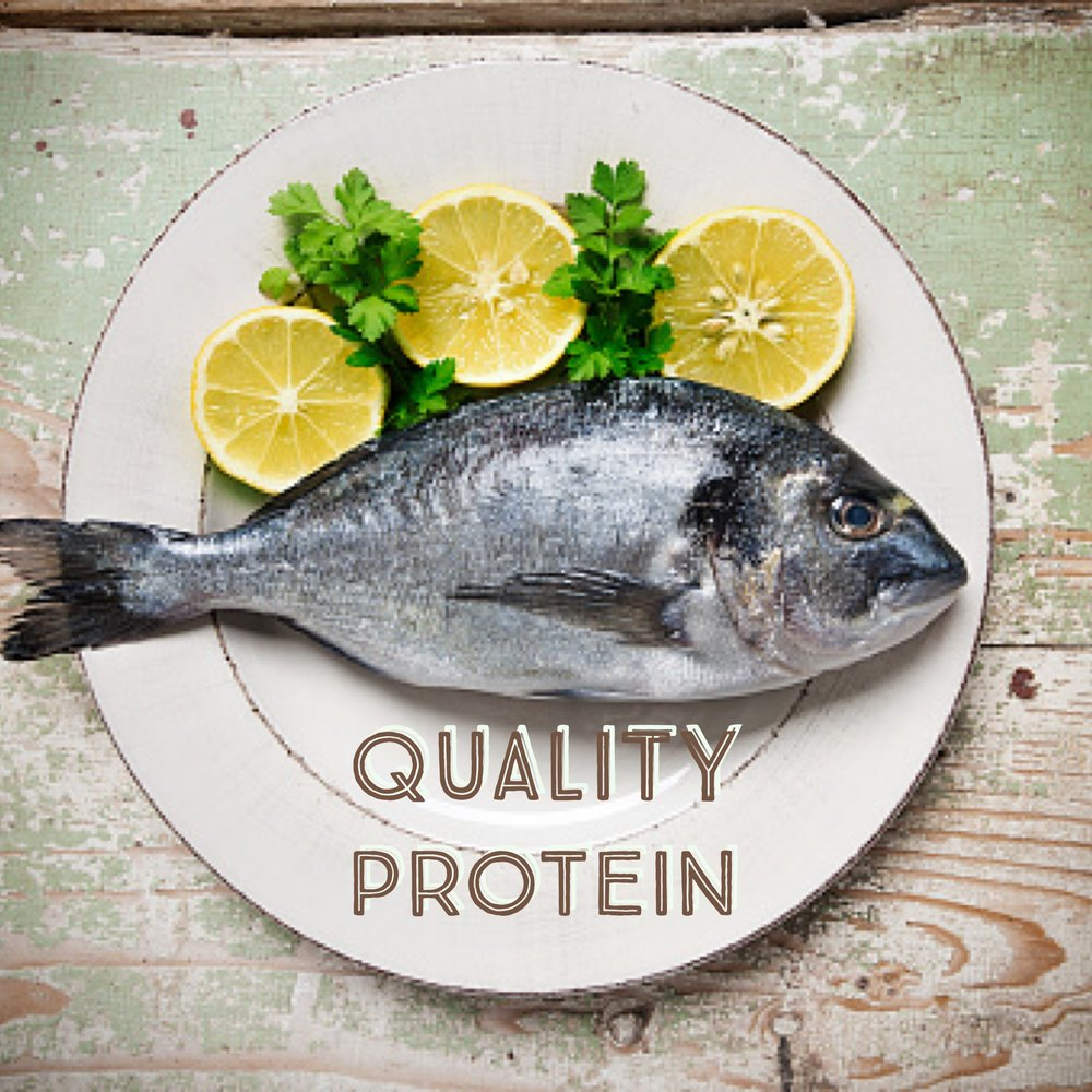 Quality Protein and Where to Find It