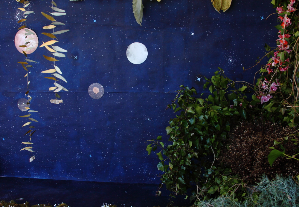hand painted star paper, printed planets from my tree planet photography series