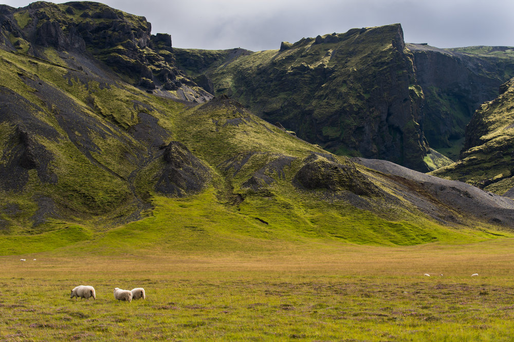 Iceland_2016-058.jpg