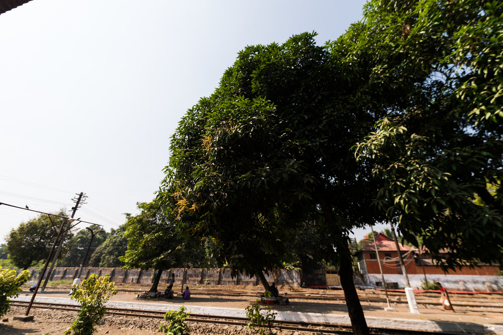 Yangon-00081.jpg