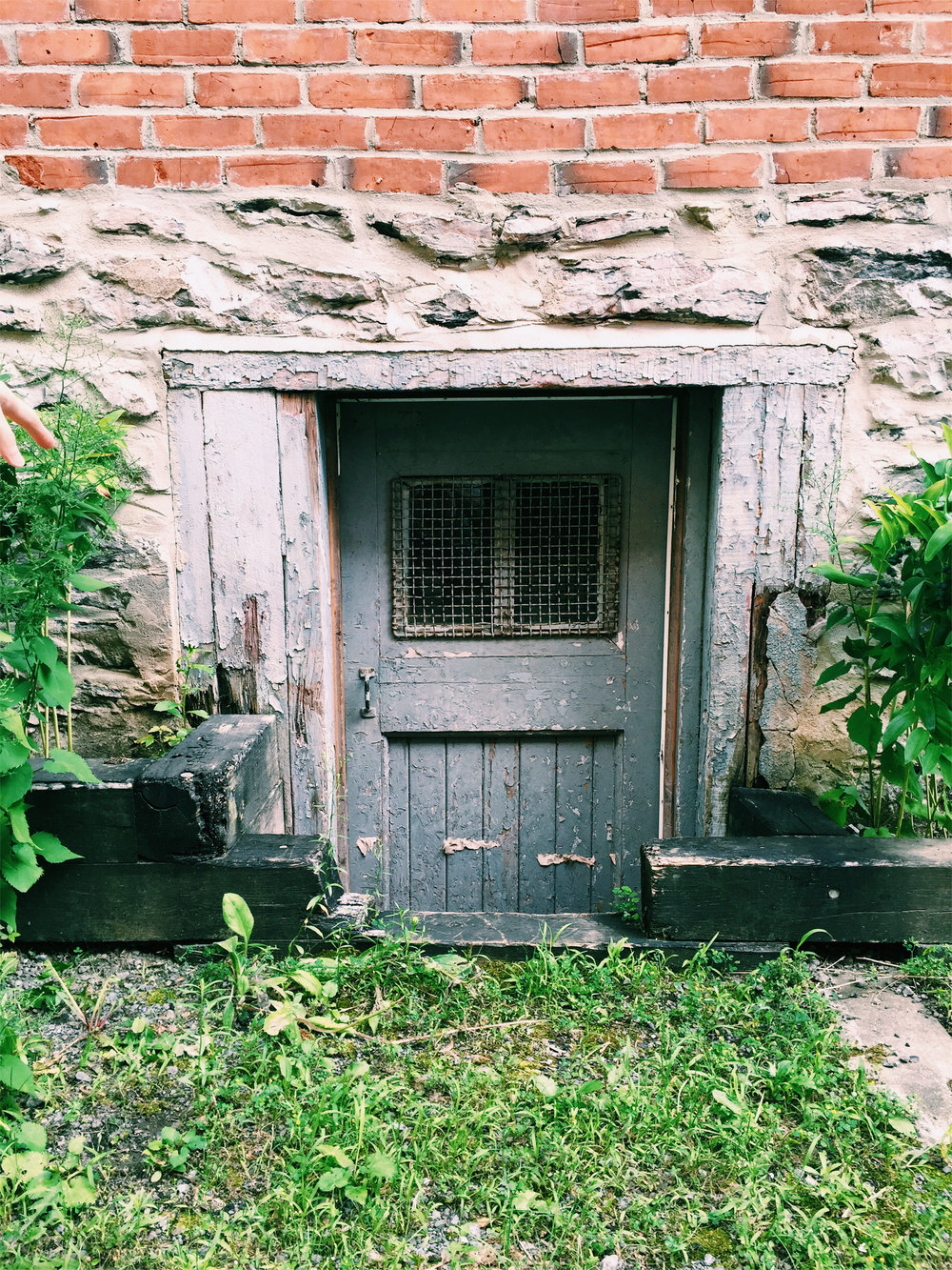 Duplex cellar door in NDG via Lora Weaver Mysteries by Katy Leen