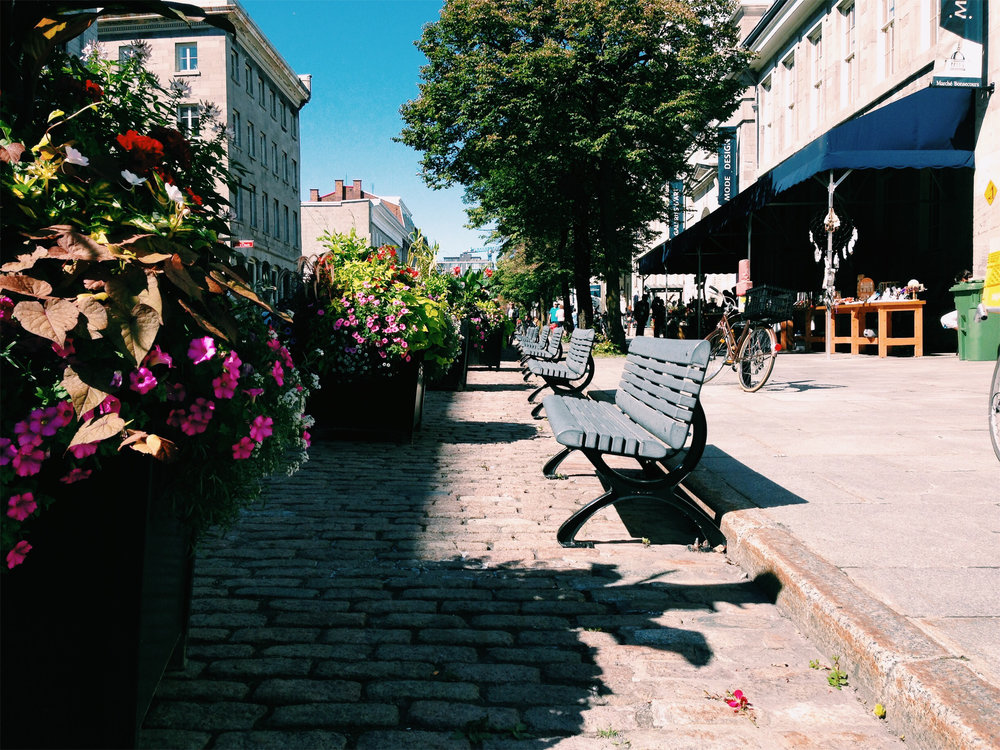 Cobblestone streets in Old Montreal via Lora Weaver Mysteries by Katy Leen