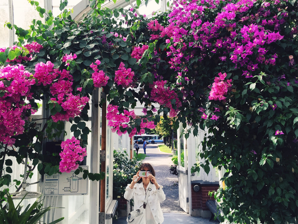 Westmount Conservatory and Greenhouses, Montreal, via Lora Weaver Mysteries by Katy Leen
