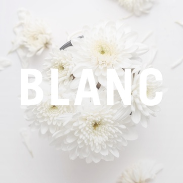 Blanc Mysteries by Katy Leen.jpg