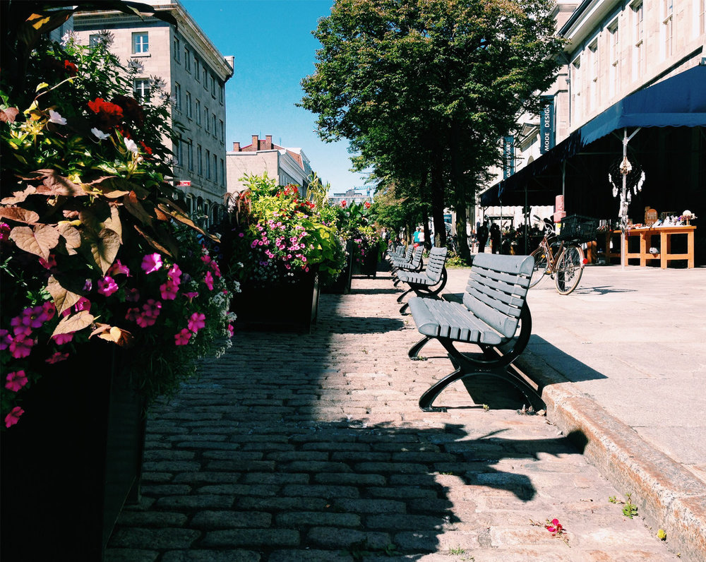 Vieux Montreal.jpeg