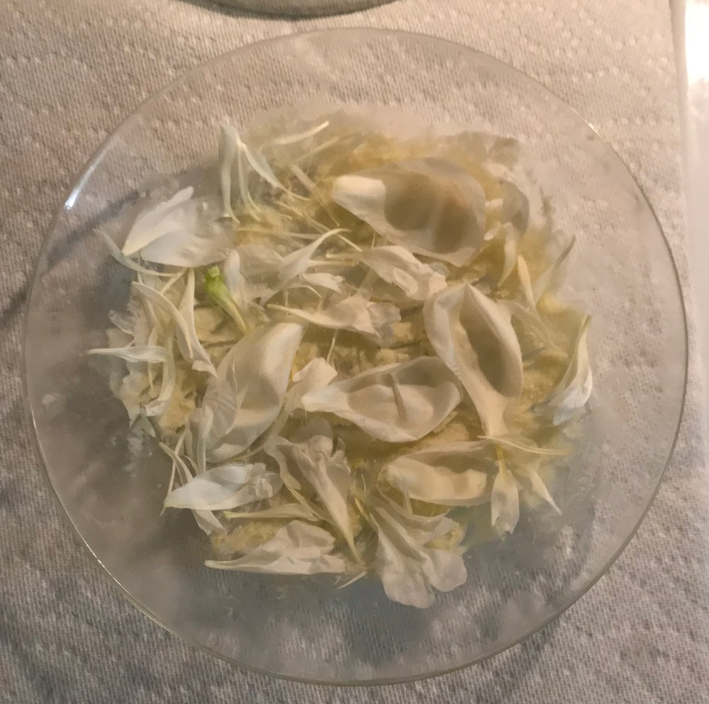 First layer of fresh white peony petals.