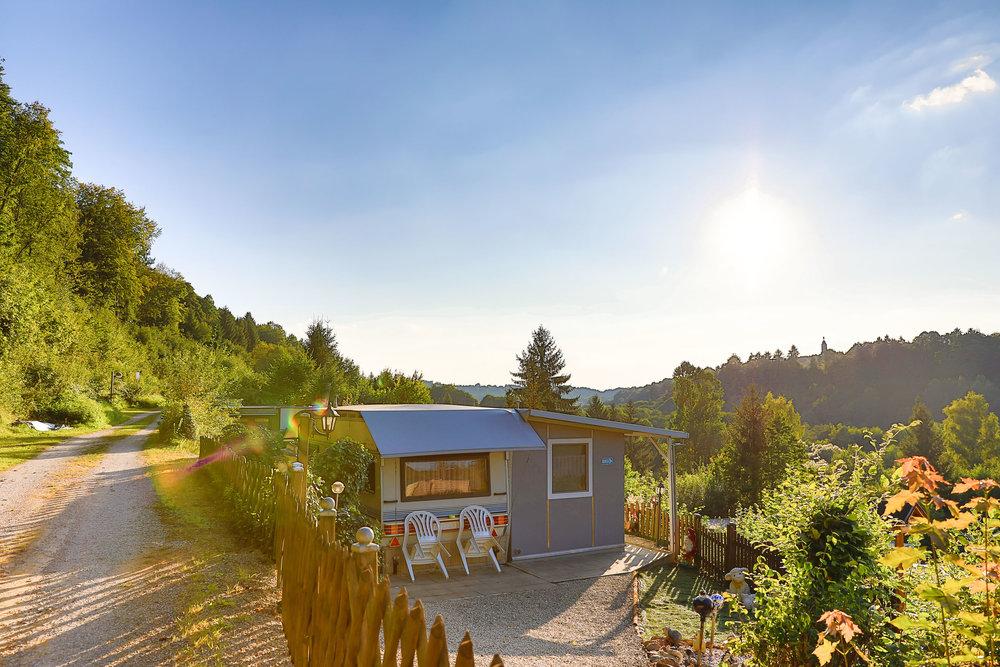 Abtrennung mittels Bäumen und Hecken zum Nachbarn -