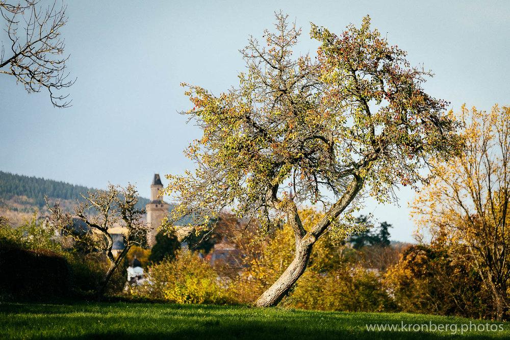 kronberg castle autumn 2017-6.jpg