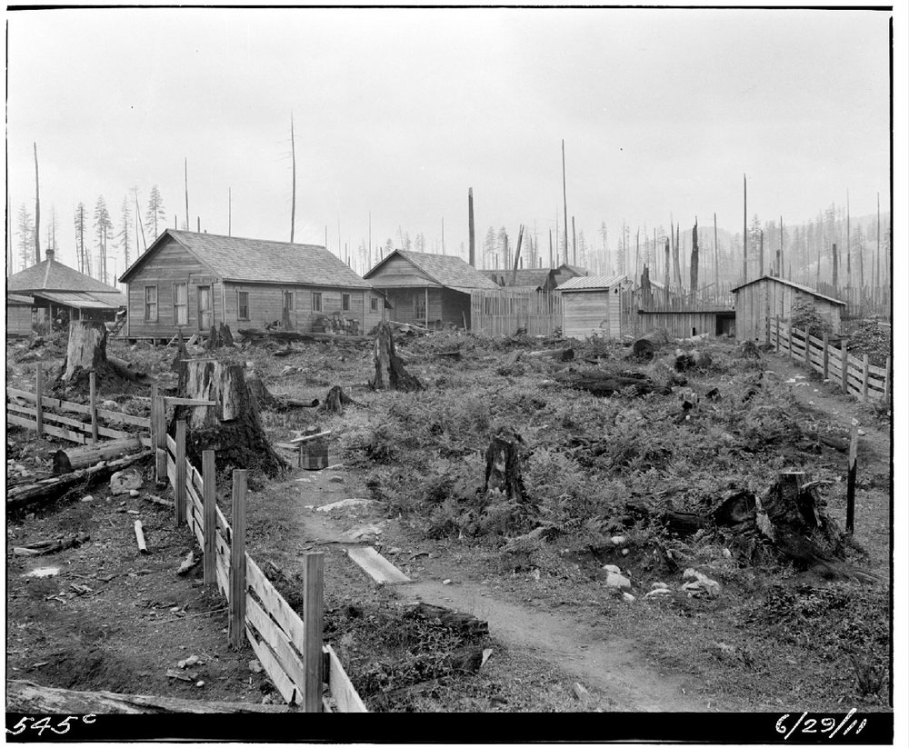 Former Nikkei community in Barneston, Washington.  Photograph courtesy of the Seattle Municipal Archives, Item #48039