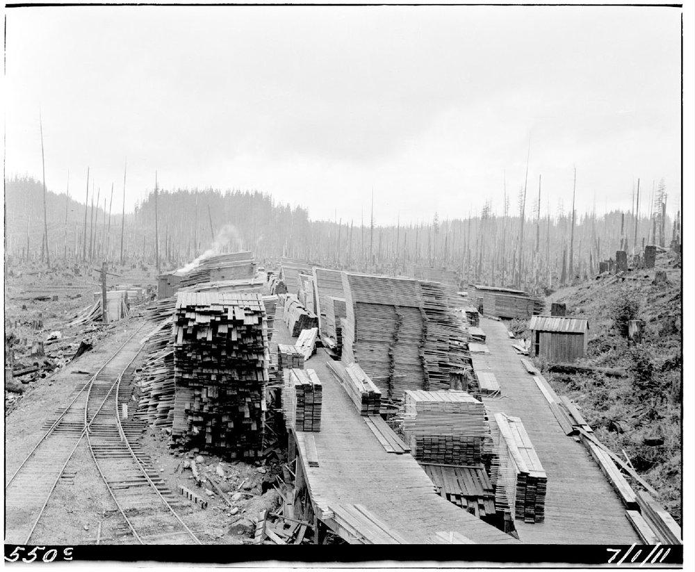 Barneston lumber yard.  Photograph courtesy of the Seattle Municipal Archives, Item  #48044