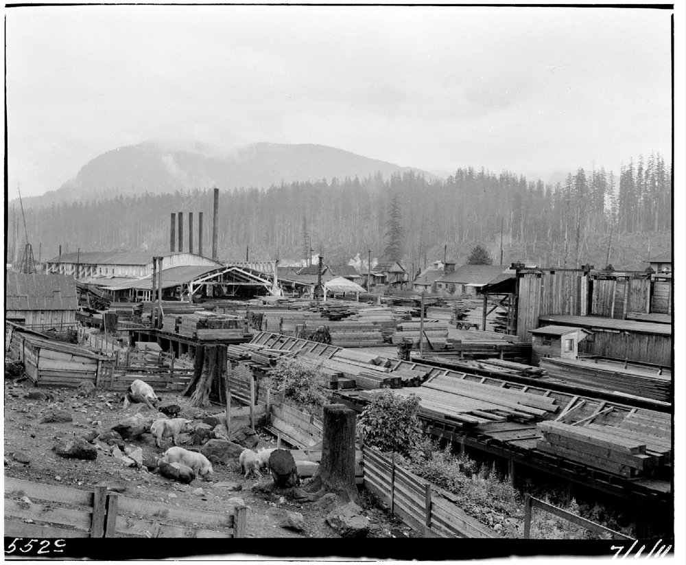 General view of Barneston.  Photograph courtesy of the Seattle Municipal Archives, Item  #48046