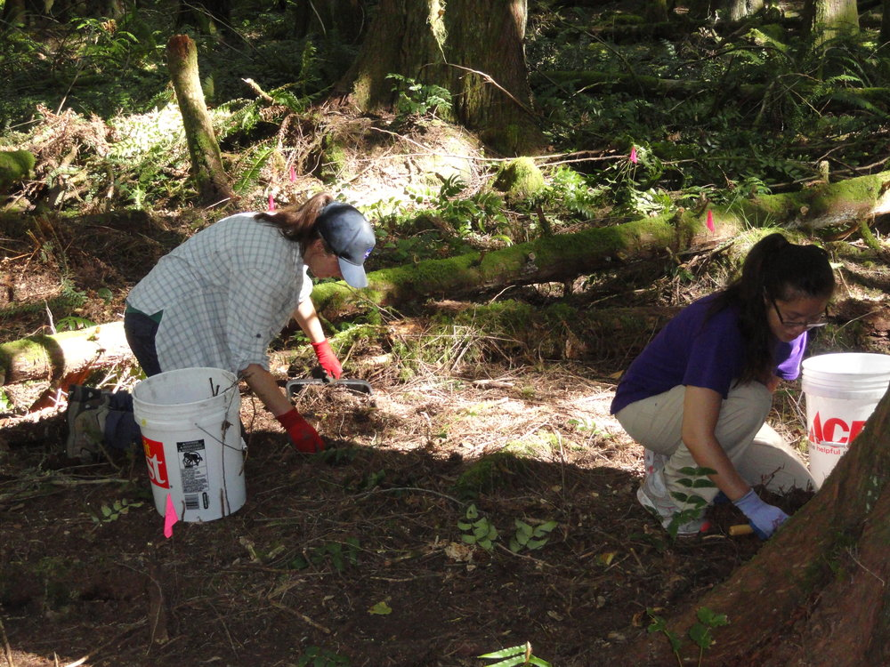 Field volunteers help collect artifacts in Barneston.  Photo: David Carlson