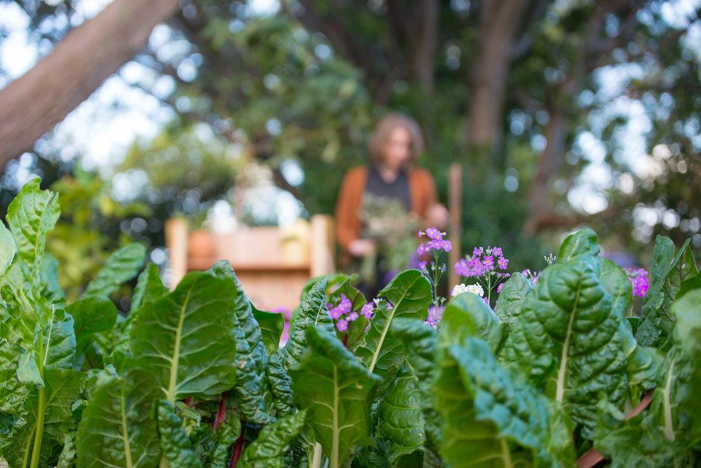A Garden - Colleen -0001Amanda Hallihan-6.jpg