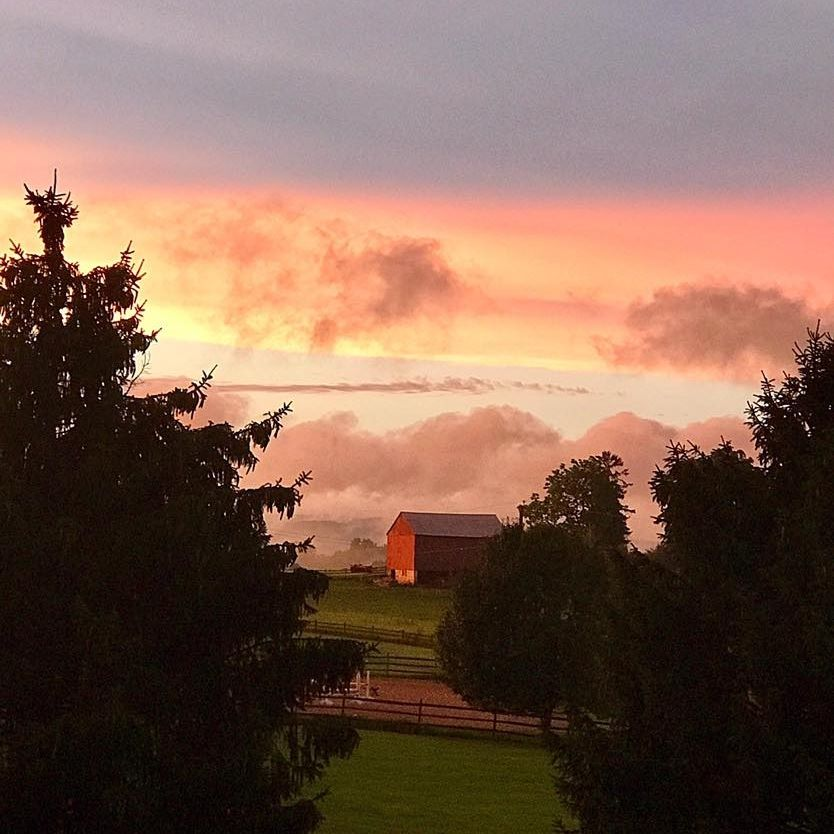 We are located in the rolling hills of Hunterdon County, NJ. This amazing view of our barn on our small farm was taken by a friend.