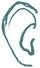 web-ear-4.jpg