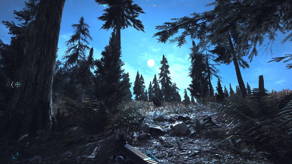 Far Cry® 5 15.jpg