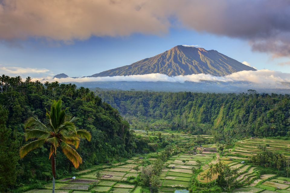 A day in the life - of a Sourced Bali Tour