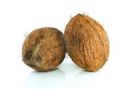 cocnut
