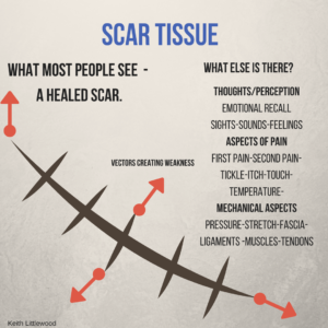Scars-300x300.png