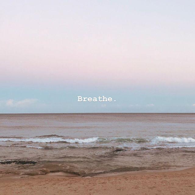 It will bring you home ❣️ #breathe #prana