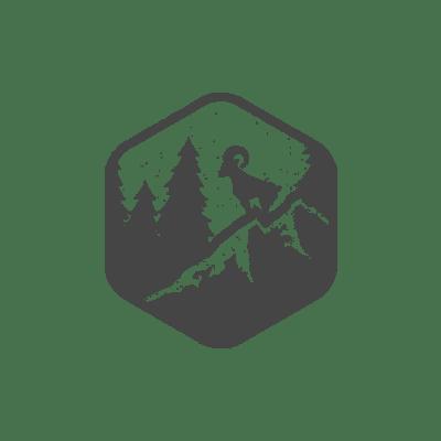 Logo 31-min.png