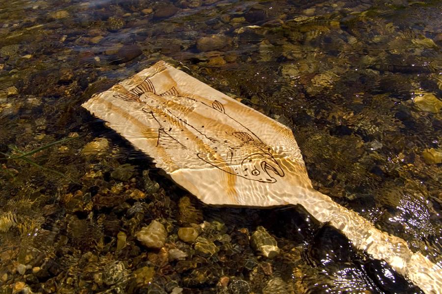 river_oar.jpg