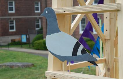 mount-pigeon.jpg