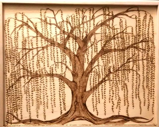 Woodburned weeping willow, 10x8 maple wood box top.  #woodburning #woodburned #pyroart #pyrography #treeart #willowtree #weepingwillow  #woodart #burnedart #willowtrees #burnedbyhand #burnedbyhandart #willowswitchdesigns