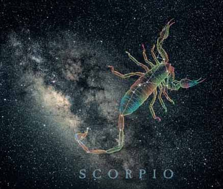 scorpio_milky.jpg