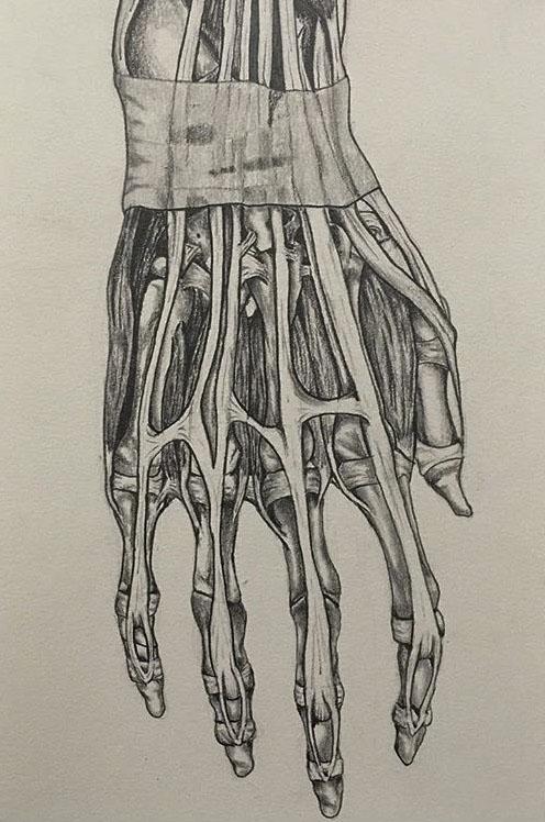 back of hand.JPG