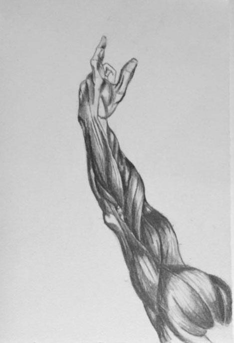 arm study.JPG