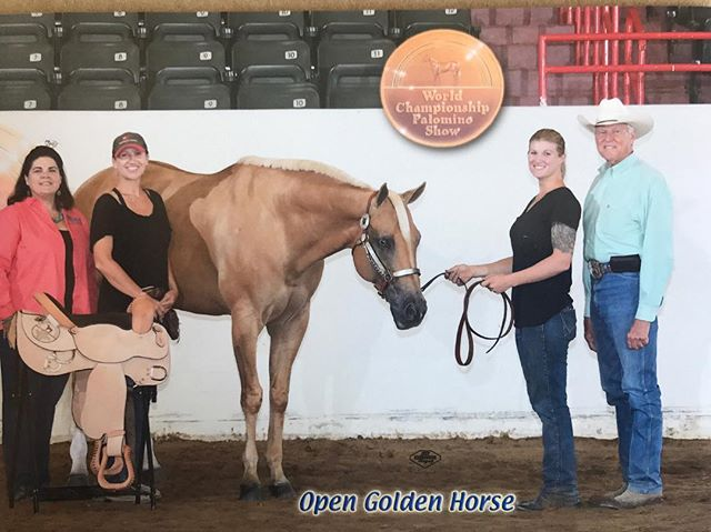 Check out Skye Blue Magic's winning PHBA/NSBA go at the at 2017 PHBA World show in our bio! That was one of many classes that helped us achieve this pictured open golden horse award (we were the highest pointed horse who attended the show) I am used to showing in the AQHA circuit-this was our first PHBA show. The show was ran phenomenally, professional and fun!! Thanks again to Don Coats for the warm welcome and special thanks to all the hard working volunteers who put in long exhausting days/weeks but still managed to keep the smiles and positive vibes going around. We met so many amazing people. I don't miss the Mississippi heat, humidity, mosquitos or chiggers, but I miss the amazing people we met along the way and seeing them everyday. #kbperformancehorses #acceptingnewclients #skyebluemagic #skye #phba #aqha #goldenhorse #trail #seniortrail #phbaworldchampion2017 #phbaworldshow #phbaworldchampion #saddle #highpoint #allaround #allaroundmare #3xworldchampion #2xnsbaChampion #1xreserveworldchampion #horsebackriding #newportbeach #socal #orangecounty #orangecountyhorses #orangecountyhorseshowassociation