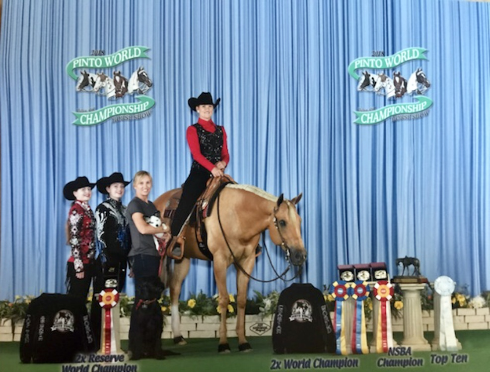 2018 PtHA World Show On Skye Blue Magic - World Champion Solid Senior TrailReserve Champion Solid English DisciplineReserve Champion Solid Western DisciplineNSBA Champion Solid Senior Trail10th Solid Senior Hunter Under Saddle