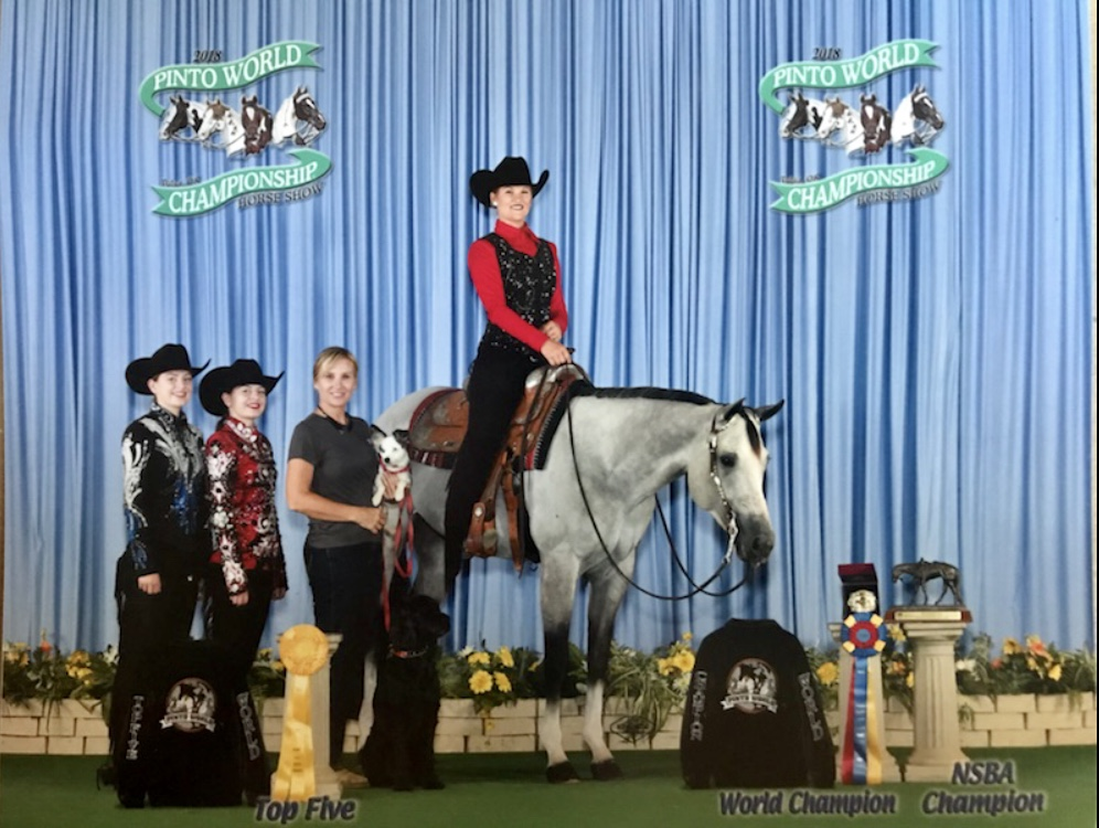 2018 PtHA World Show On Notice Im Packin - World Champion Green TrailNSBA Champion 5 & Under Trail3rd 5 & Under Trail