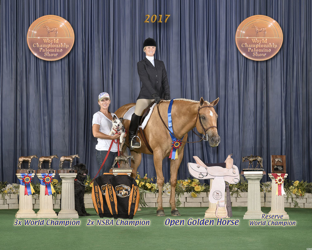 2017 PHBA World Show on Skye Blue Magic - Top Palomino In CaliforniaFor All Of 2017 For PHBA Skye Blue Magic Ranked Top 3 Ranch Horse & Top 10 Road HackOpen Golden HorseWorld Champion Senior TrailWorld Champion Senior Hunter Under SaddleWorld Champion Open Road HackReserve World Champion Hunter In HandNSBA Champion Senior TrailNSBA Champion Open Hunter Under Saddle4th Open Ranch Riding5th NSBA Senior Western Pleasure7th Open Senior Western Pleasure