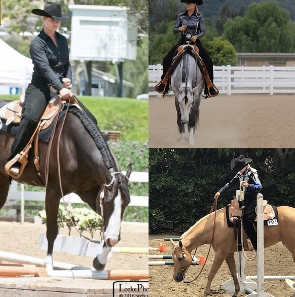 2017 SCPHA End Of The Year                  Awards - Overall Champion Buckle Winner- Skye Blue Magiic Overall Champion Buckle Winner 1/2nd year Trail Notice Im PackinOverall Champion Buckle Winner 1/2nd Year Western Pleasure -Notice Im PackinReserve Champion Jacket Winnner Senior Trail- Repeat After Mee
