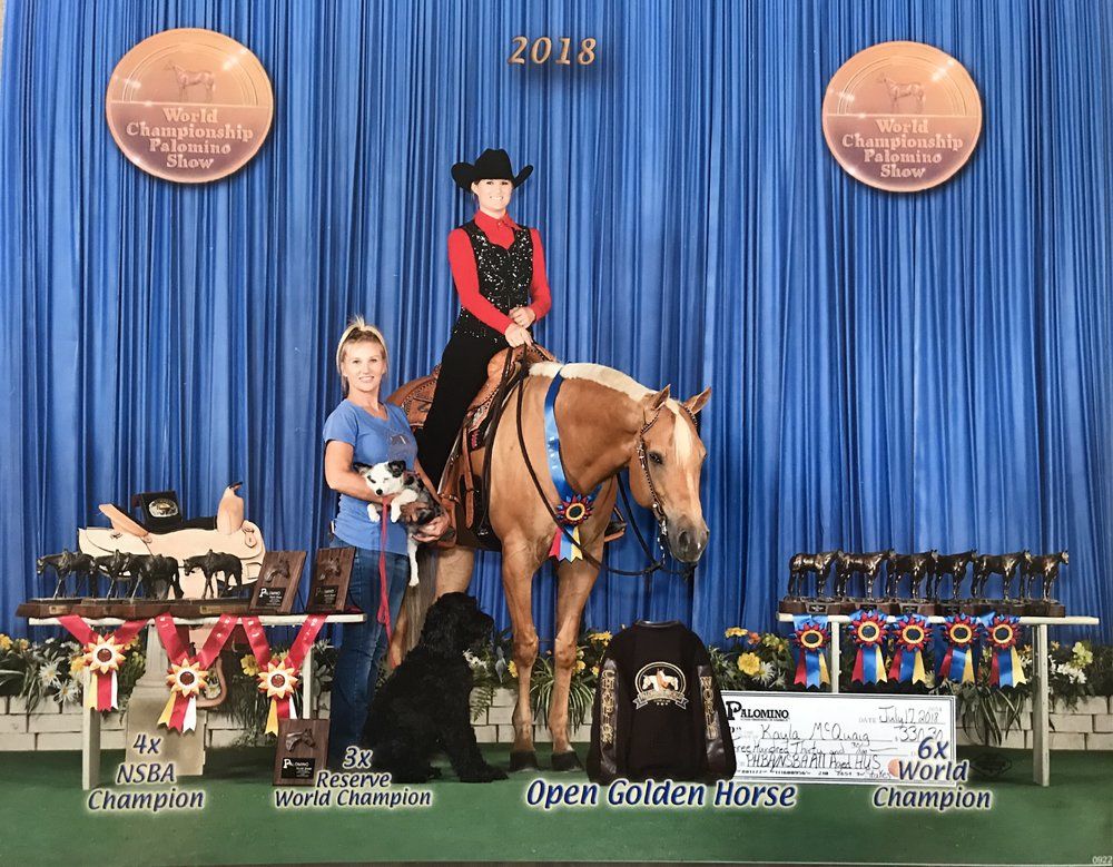 2018 PHBA World Show - Open Golden HorseWorld Champion Senior TrailWorld Champion Senior Road HackWorld Champion Open Ranch HorseNSBA Champion Senior TrailReserve World Champion Hunter In HandReserve World Champion Senior Hunter Under Saddle3rd All Age Hunter Under Saddle Stakes