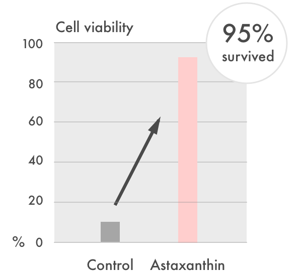 Astaxanthin Cell Protection.png