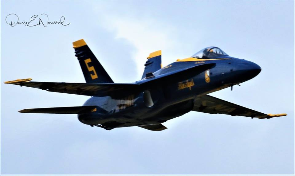 Blue Angel-1.jpg